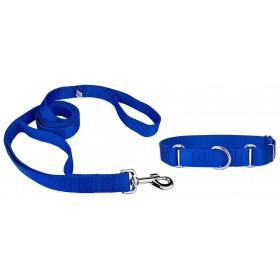 Medium Size Blue Dog Collar...